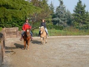 lezione equitazione brescia