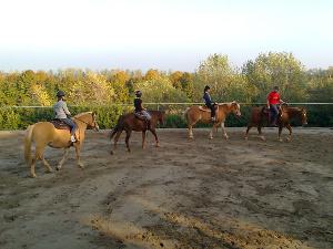 Lezione equitazione di gruppo