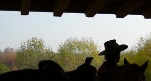 Passeggiate a cavallo vicino a Brescia