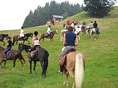 Andare per sentieri a cavallo - Brescia Monta western